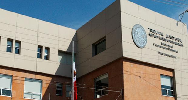 Regidor de Coronango abre otro juicio en Tepjf para exigir sueldo