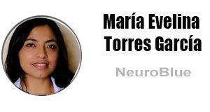 columnistas-María-Evelina-Torres-García