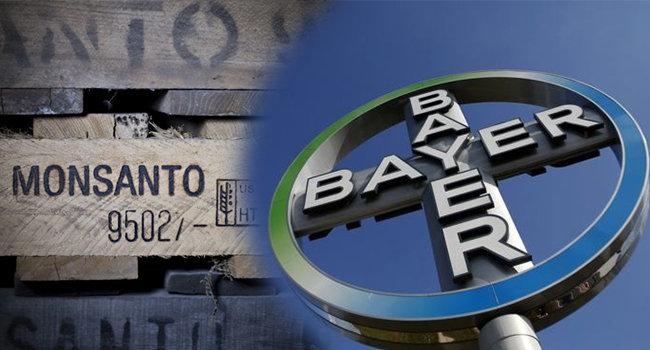 Bayer compra Monsanto por 66 mdd. Foto: Especial