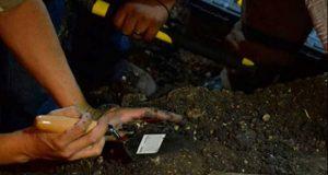 Cadáver de fosa clandestina en colonia Del Valle sería víctima de secuestro