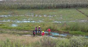 Huachicol afectó 200 hectáreas y 5 pozos en 2017: Sagarpa