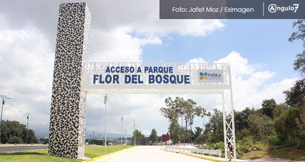 En San Lázaro, Morena exige a Gali frenar enajenación de patrimonio