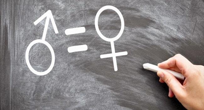 Observatorio vigilará elecciones para garantizar derechos de mujeres. Foto: SEG