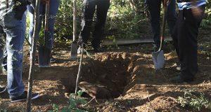 Sigue violencia en Acapulco: exhuman 5 cuerpos de fosa clandestina
