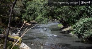 70% de los ríos mexicanos está contaminado gravemente