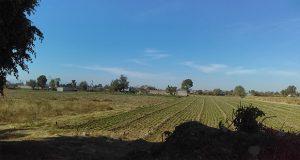 Terreno cercano a la unidad deportiva de San Cristobal Tepontla