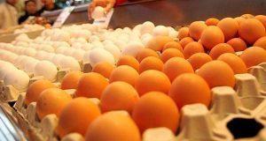 Precio del huevo llega a 85 pesos el kilo en norte del país