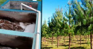 5 mdp para impulsar zona ecológica y laboratorio de calidad de agua