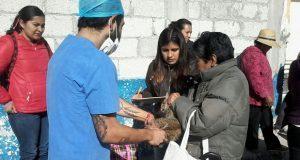 Comuna de Puebla realiza jornada de esterilización de mascotas