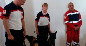 El binomio canino de Puebla que salvó vidas en la CDMX tras el 19-S