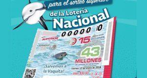 Vaquita marina aparece en billetes de lotería