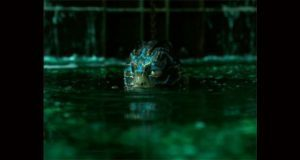 """Con 13 nominaciones, """"La forma del agua"""" lidera los premios Oscar"""