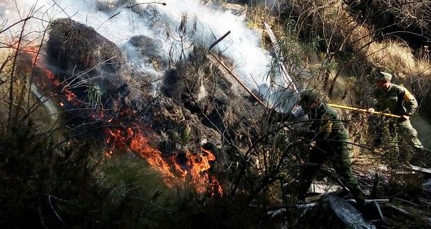 Se queman 30 hectáreas en faldas de La Malinche; no hay heridos.