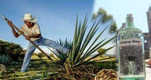 Buscan impulsar producción de mezcal en ejido El Aguacate