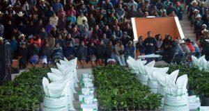Antorcha entrega cafetos y fertilizante a campesinos de Huitzilan