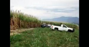 Descubren nueva fosa clandestina con 8 cadáveres en Nayarit