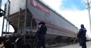 Elementos de SSP interrumpen saqueo de tren en Palmar de Bravo