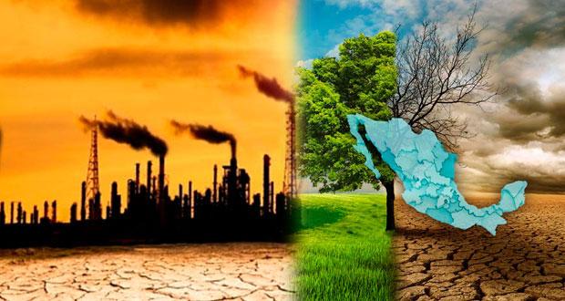 Ley de cambio climático es conocida por 28% de empresarios