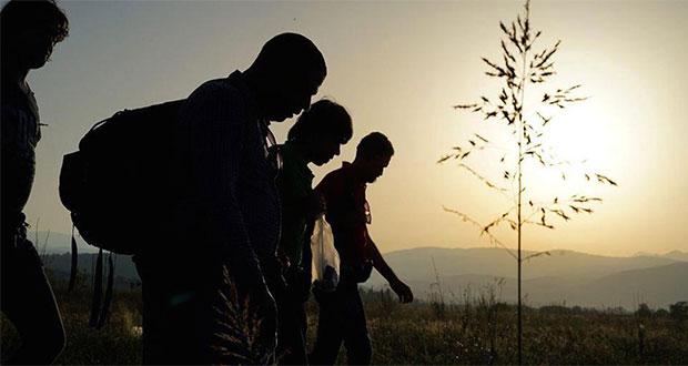 Hallan a 229 migrantes dentro de casas de seguridad en Tamaulipas