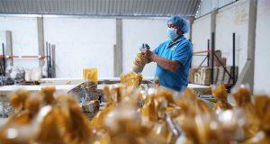Inaes destinará 100 mdp para proyectos productivos en Puebla en 2018