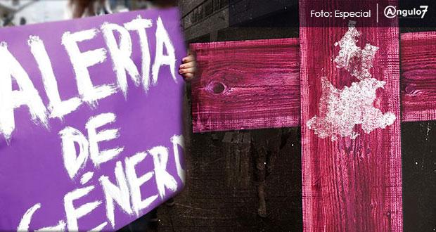 Conavim retrasa solicitud de alerta de género en Puebla: observatorio nacional