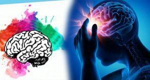 En BUAP, foro aborda enfermedades y funciones del cerebro