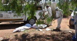 FGE de Zacatecas reporta hallazgo de 8 fosas con 13 cuerpos