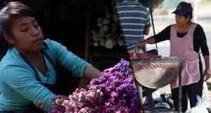 Ocupación femenina en el sector informal es 1.3% más que los hombres
