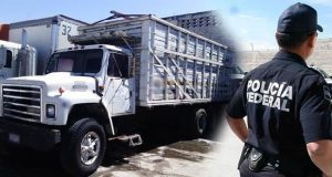 Aseguran camión robado en bodega detrás del mercado Hidalgo