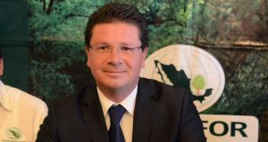 PVEM de San Pedro respalda a candidato de PAN y MC a alcaldía