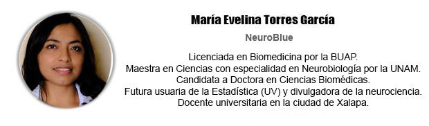 biografia-columnista-María-Evelina-Torres-García