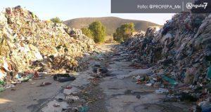 La Profepa realizó una visita a un depósito de residuos en Palmar de Bravo y constató que son residuos sólidos urbanos y no peligrosos. Foto: Especial
