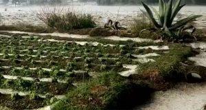 Por granizada y lluvia, Segob declara emergencia en 9 municipios poblanos