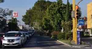 Calor se agrava por la falta de árboles: especialista de BUAP