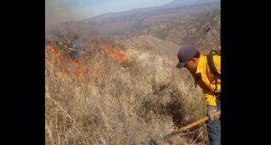 Hasta 1 de junio, incendios se redujeron 62% en Puebla: Conafor