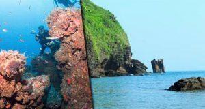 Buscan que arrecifes de Los Tuxtlas, Veracruz, sean área protegida