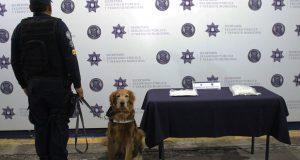 Unidad canina asegura más de un kilo de posible heroína en la CAPU