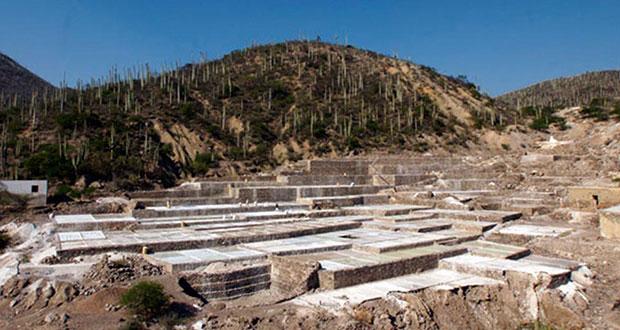 Entre cactáceos y salinas, Zapotitlán también busca ser Pueblo Mágico