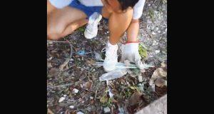 """Lanzan """"basura challenge"""" para recolectar desechos en las calles"""