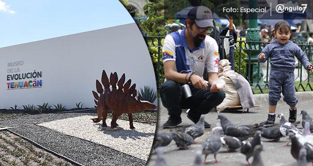 Tehuacán, 10ª ciudad con peor calidad de vida; Puebla también se rezaga: GCE