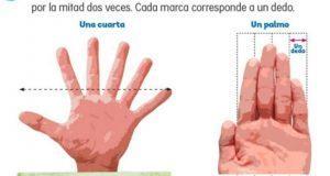SEP sólo corrige error de mano con 6 dedos en libro de texto digital