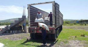 Antorcha gestiona fertilizante para 62 productores de caña en Izúcar