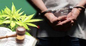 Mayoría no apoya legalización de drogas y amnistía a delincuentes