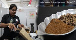 Puebla aporta 15% de producción nacional de café