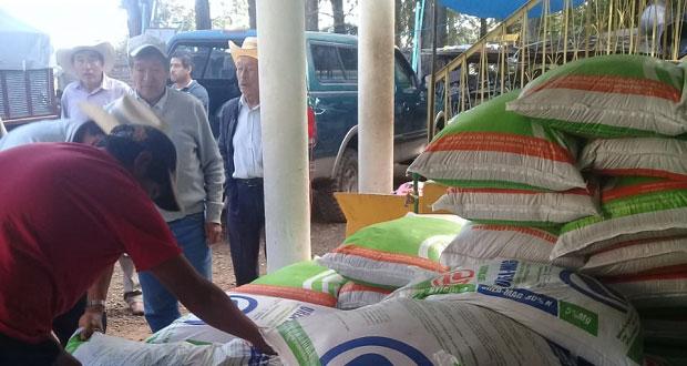 Entregan 5 toneladas de fertilizante a 100 agricultores de Zacatlán