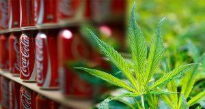 A Coca Cola le interesa el negocio de bebidas a base de cannabis