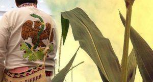 Realizan 1er encuentro de pueblos indígenas en La Resurrección