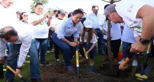 Voluntarios plantan 50 mil árboles en 12 puntos de Puebla capital