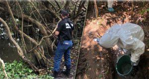 Hallan fosas clandestinas con al menos 166 cadáveres en Veracruz