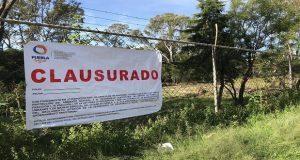 Por talar árboles sin permiso, gobierno estatal clausura vivero Santa Cruz